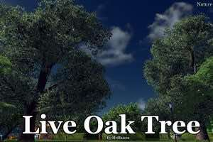 Live Oak Tree Mod for Cities Skylines